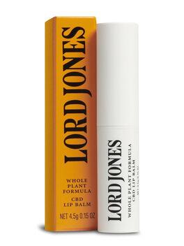 Whole Plant Formula CBD Lip Balm, Orange, large
